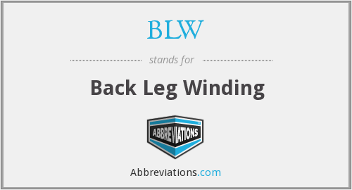 BLW - Back Leg Winding