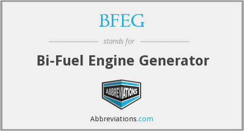 BFEG - Bi-Fuel Engine Generator