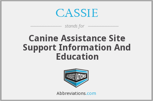 What does CASSIE stand for?