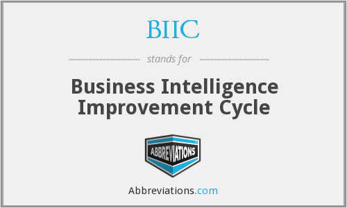 BIIC - Business Intelligence Improvement Cycle