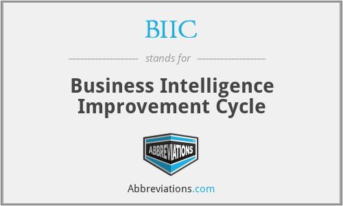 BIIC - Business Intelligence Improvement Cycle