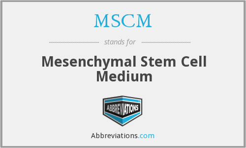 MSCM - Mesenchymal Stem Cell Medium