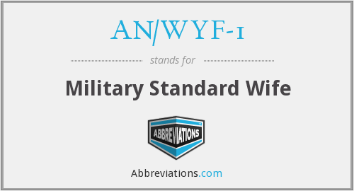 What does AN/WYF-1 stand for?