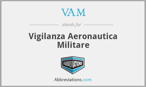 VAM - Vigilanza Aeronautica Militare