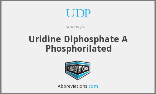 UDP - Uridine Diphosphate A Phosphorilated