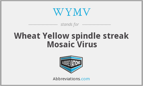 WYMV - Wheat Yellow spindle streak Mosaic Virus