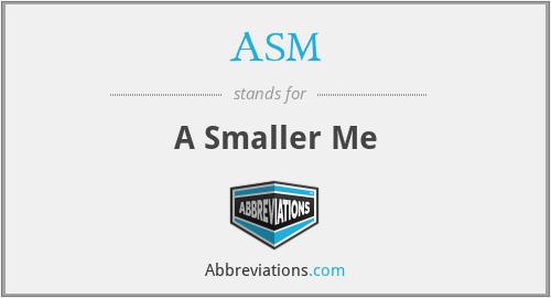 ASM - A Smaller Me