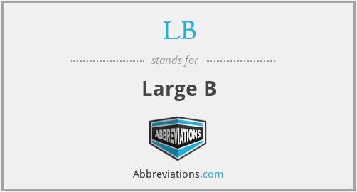 LB - Large B