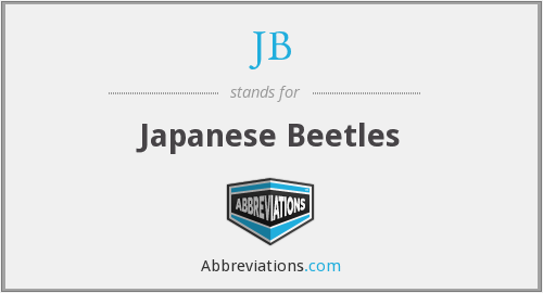 JB - Japanese Beetles