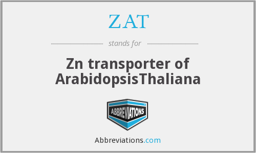 ZAT - Zn transporter of ArabidopsisThaliana