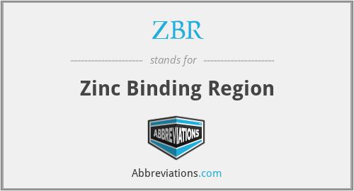 ZBR - Zinc Binding Region