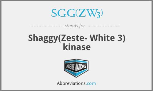 SGG(ZW3) - Shaggy(Zeste- White 3) kinase
