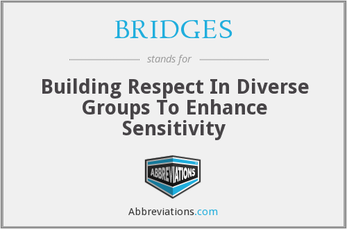 BRIDGES - Building Respect In Diverse Groups To Enhance Sensitivity