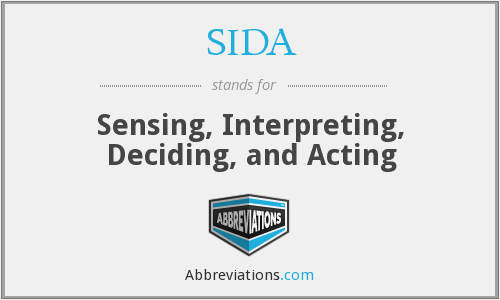SIDA - Sensing, Interpreting, Deciding, and Acting