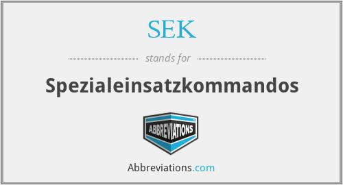 SEK - Spezialeinsatzkommandos