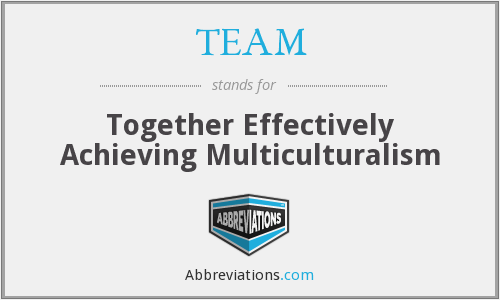 TEAM - Together Effectively Achieving Multiculturalism