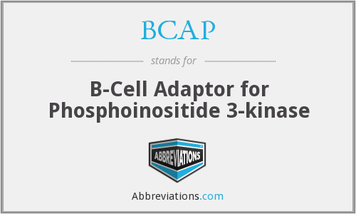 BCAP - B-Cell Adaptor for Phosphoinositide 3-kinase
