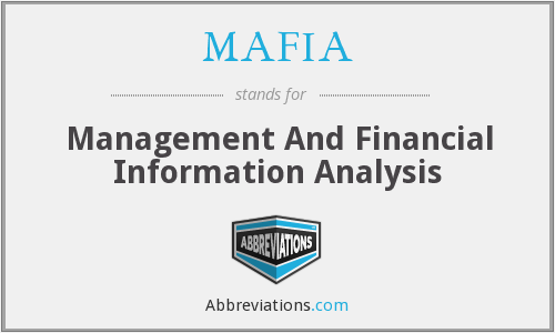 MAFIA - Management And Financial Information Analysis