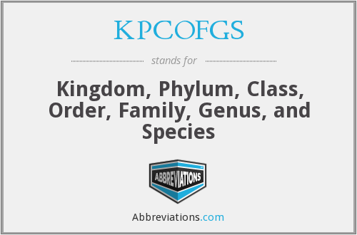 KPCOFGS - Kingdom, Phylum, Class, Order, Family, Genus, and Species