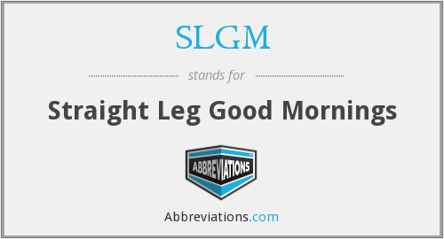 What does SLGM stand for?