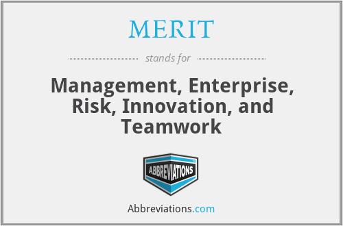 MERIT - Management, Enterprise, Risk, Innovation, and Teamwork