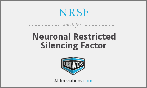 NRSF - Neuronal Restricted Silencing Factor