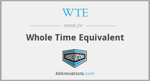 WTE - Whole Time Equivalent