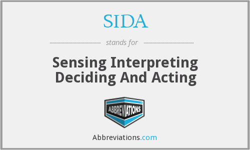 SIDA - Sensing Interpreting Deciding And Acting