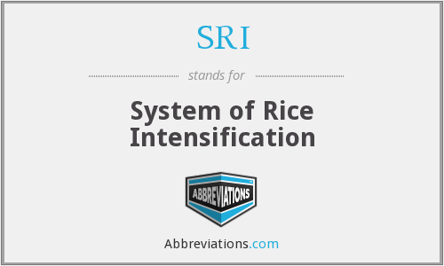 SRI - System of Rice Intensification