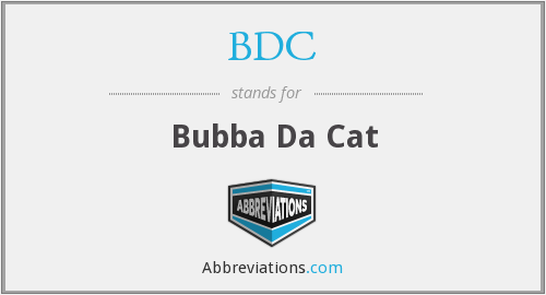 BDC - Bubba Da Cat
