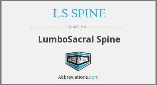LS SPINE - LumboSacral Spine