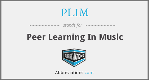 PLIM - Peer Learning In Music