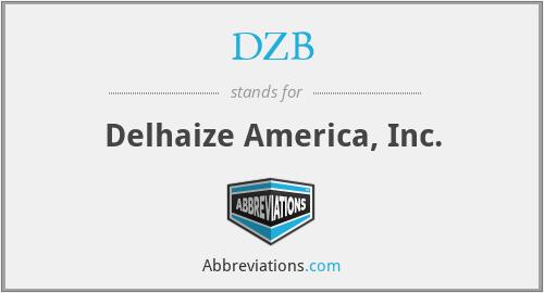 DZB - Delhaize America, Inc.