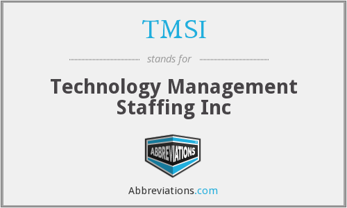 TMSI - Technology Management Staffing Inc