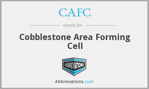 CAFC - Cobblestone Area Forming Cell