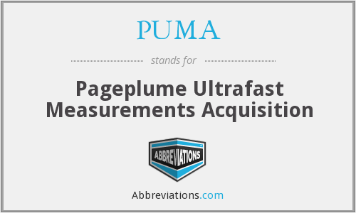 PUMA - Pageplume Ultrafast Measurements Acquisition