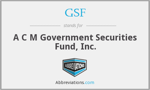 GSF - A C M Government Securities Fund, Inc.