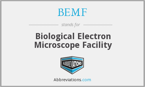 BEMF - Biological Electron Microscope Facility