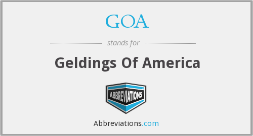 GOA - Geldings Of America