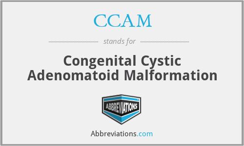 CCAM - Congenital Cystic Adenomatoid Malformation