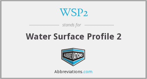 WSP2 - Water Surface Profile 2