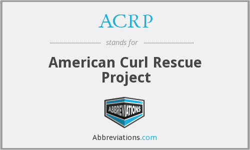 ACRP - American Curl Rescue Project