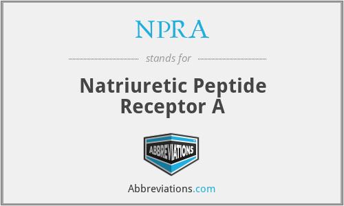 NPRA - Natriuretic Peptide Receptor A