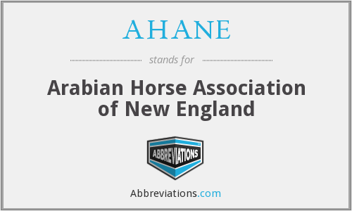AHANE - Arabian Horse Association of New England
