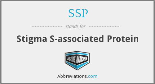 SSP - Stigma S-associated Protein