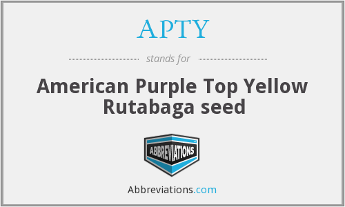 APTY - American Purple Top Yellow Rutabaga seed