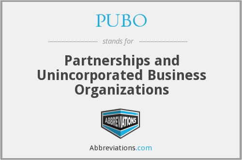 PUBO - Partnerships and Unincorporated Business Organizations