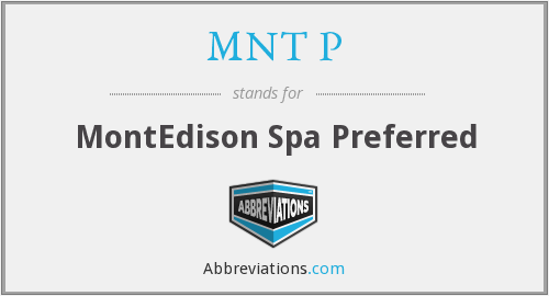 MNT P - MontEdison Spa Preferred