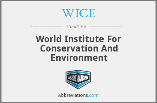 What does WICE stand for?