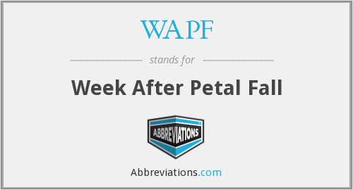 WAPF - Week After Petal Fall